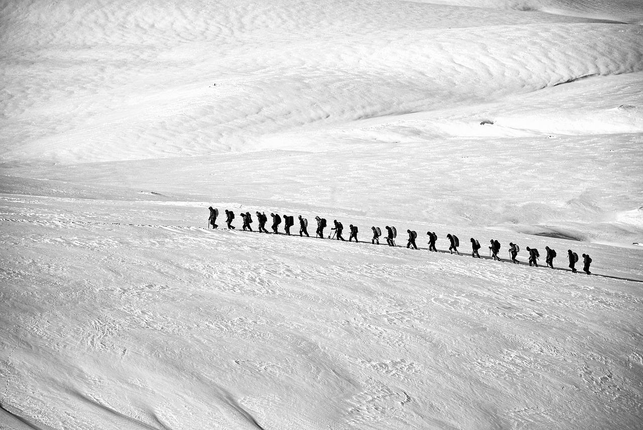seguire il leader